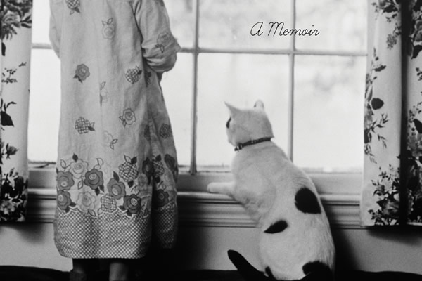 rites, books, Teaching the Cat to Sit, Michelle Theall, gay news, Washington Blade