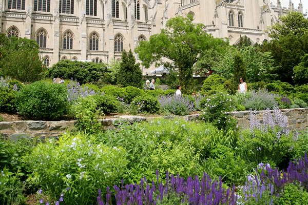 home and garden, gay news, National Cathedral, Washington Blade